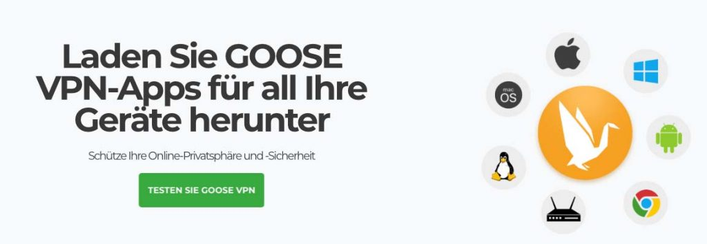 Goose VPN test