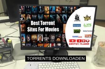 Torrent sicher downloaden   Mit einem VPN ganz einfach
