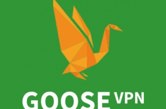 Goose VPN, Rezension 2021